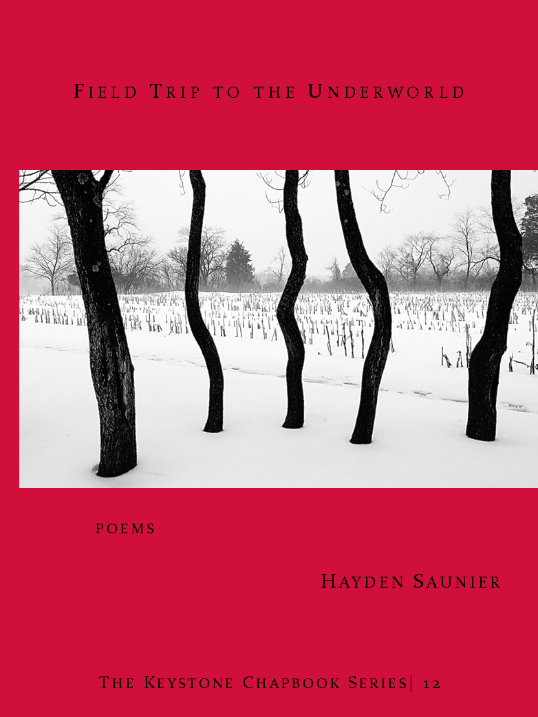Saunier_web cover 03.png