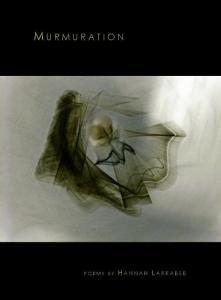 Larrabee_Murmuration_web cover